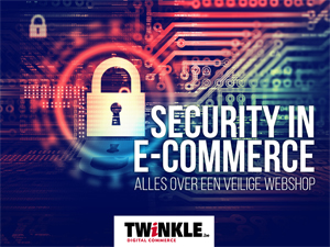 Twinkle E-book 1: Security in e-commerce